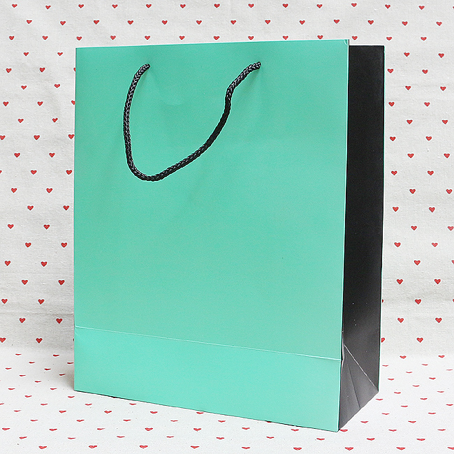 컬러 블랙 쇼핑백(대)