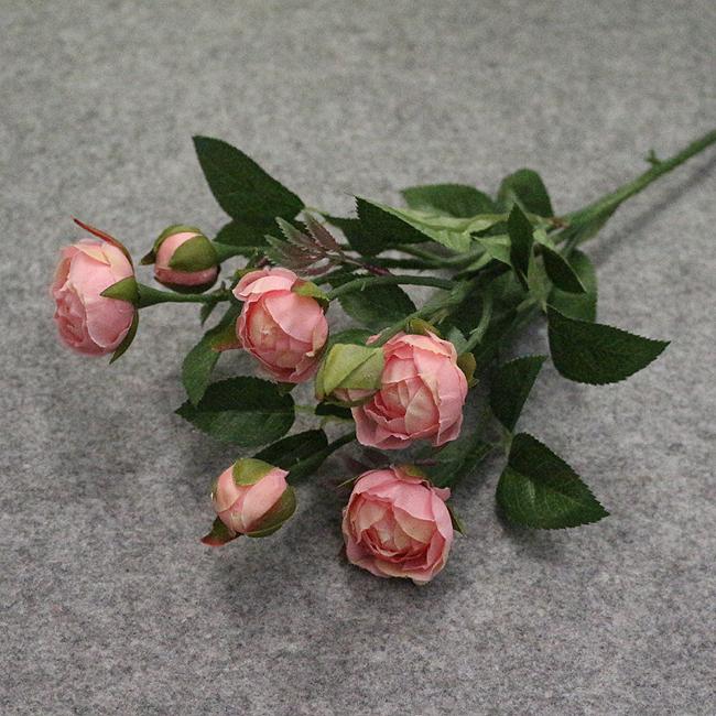 장미 부쉬A(핑크)